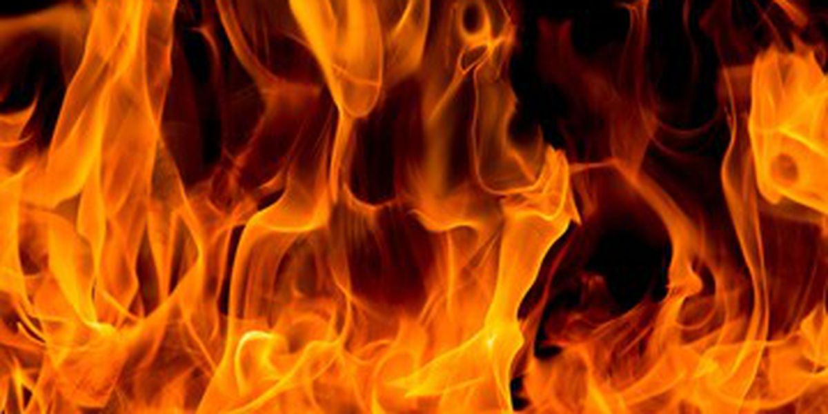 Man killed, 5-year-old injured in Appling Co. fire