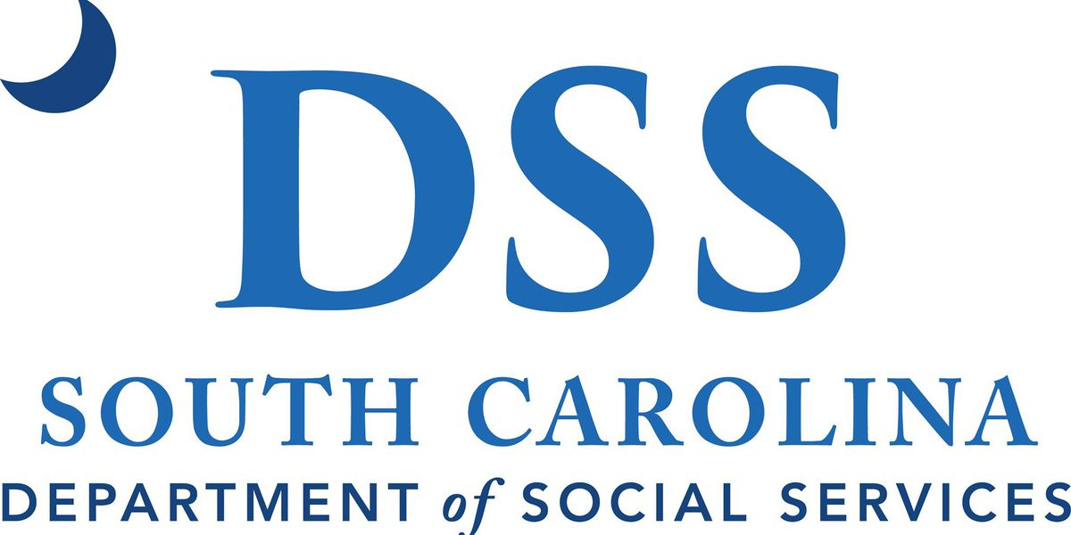 SCDSS launches new child support portal
