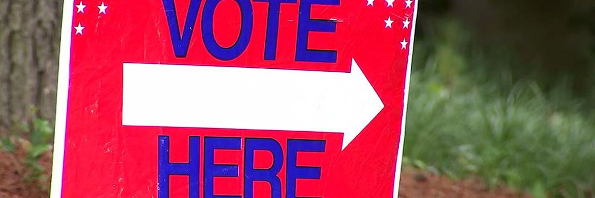 Asked and Answered: Voting in Georgia's runoff election