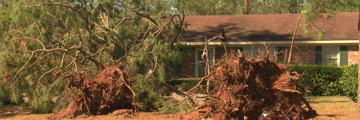 7 SWGA counties added to FEMA's individual disaster assistance list