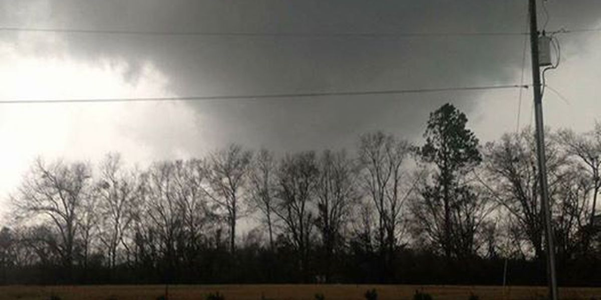 Two tornadoes touched down in Screven County on Saturday