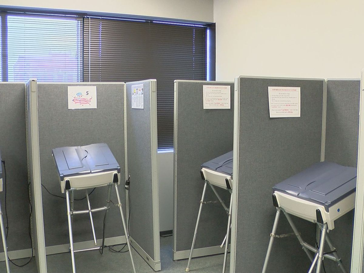 Check your provisional ballot status
