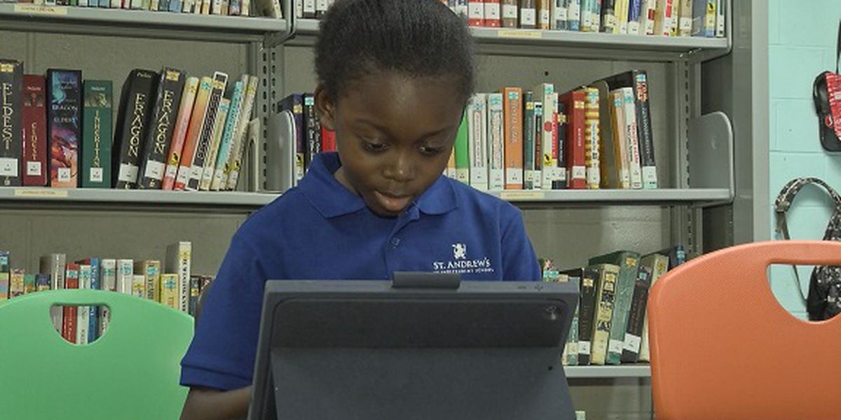 Good News: St. Andrew's 6th Grader publishes book