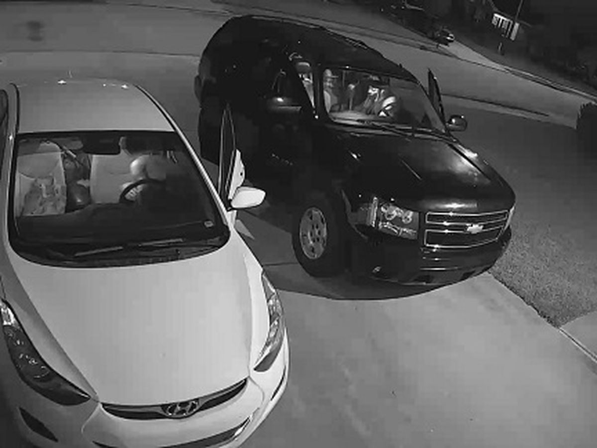 Multiple vehicle break-ins in Highlands neighborhood prompts police investigation