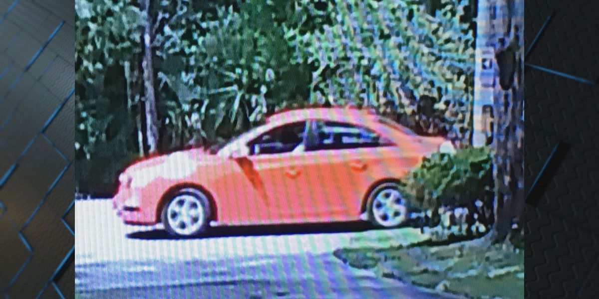 Officials trying to identify suspect, vehicle used in mail theft near Chestley Place and LaRoche Ave.