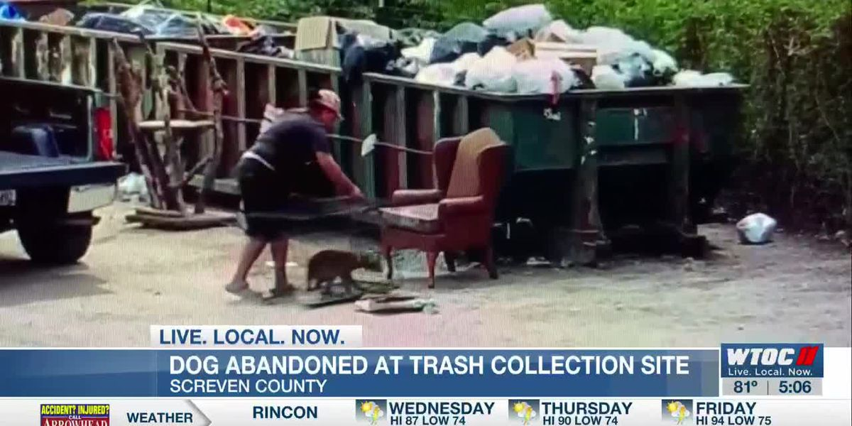 VIDEO: Screven Co. Sheriff's Office identifies woman who abandoned dog at trash site