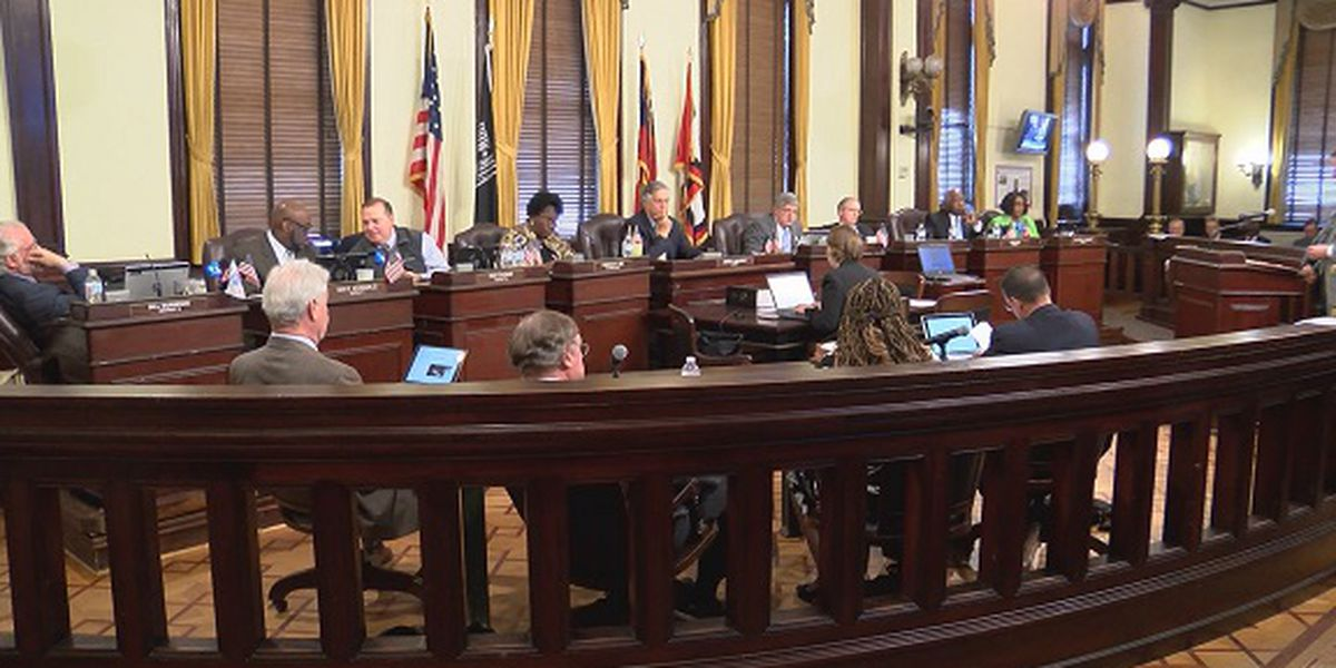 Savannah holds public hearing on proposed FY19 budget