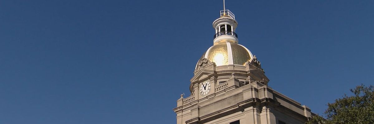 Savannah City Council gives daily update on COVID-19 response
