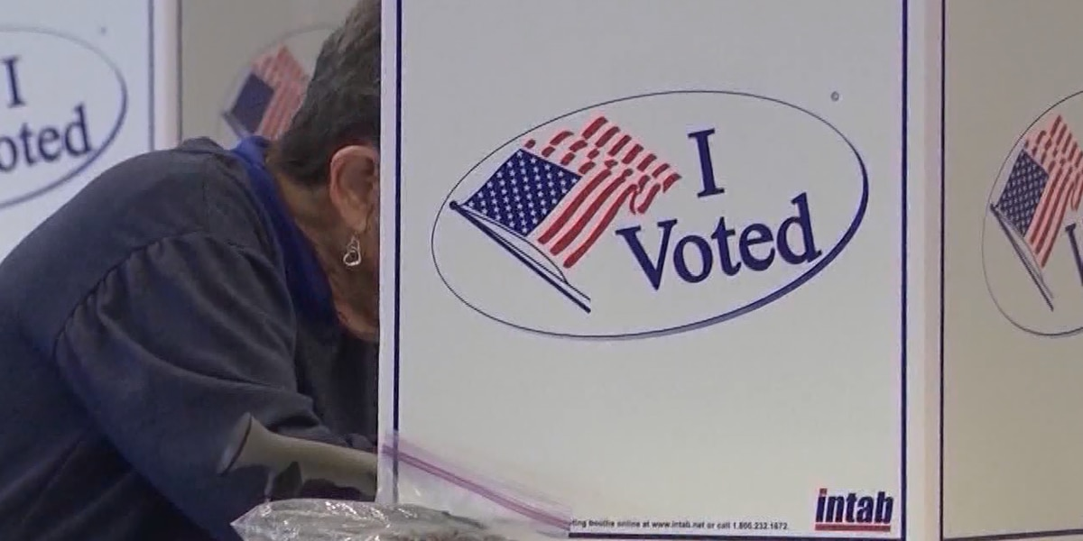 High voter turnout reported in the Palmetto State, only a few polling issues