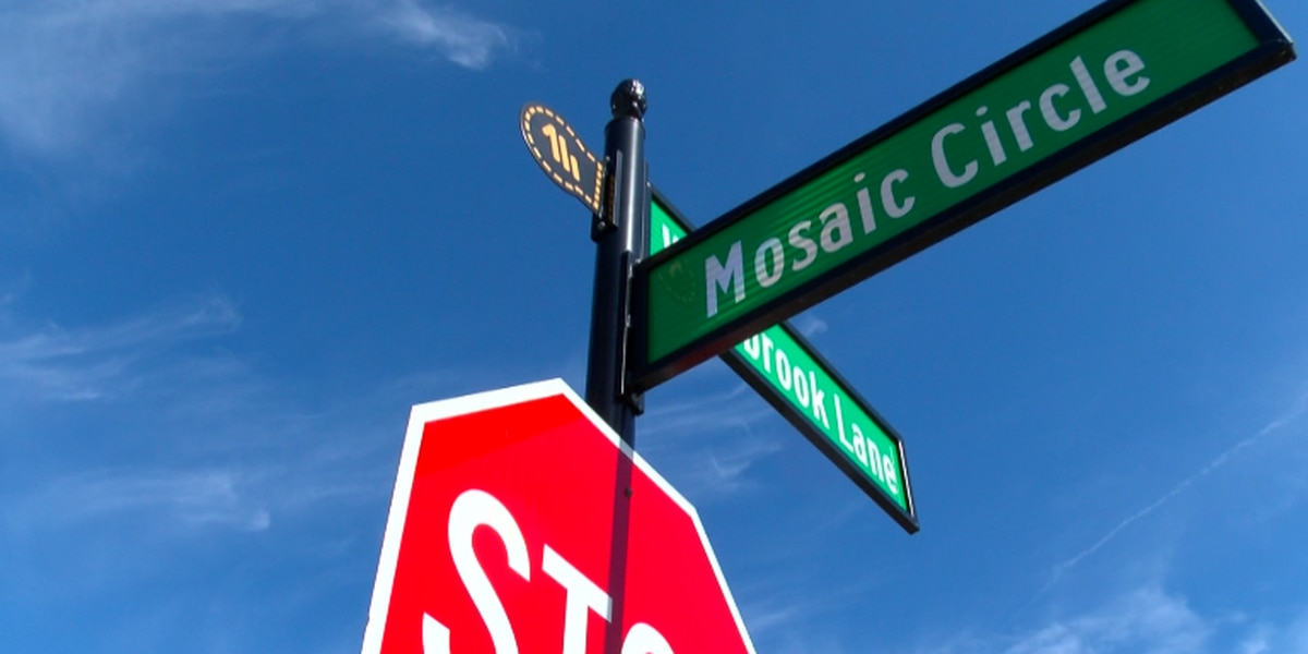 """Pooler """"Mosaic Retail Center"""" development project in hands of City Council"""