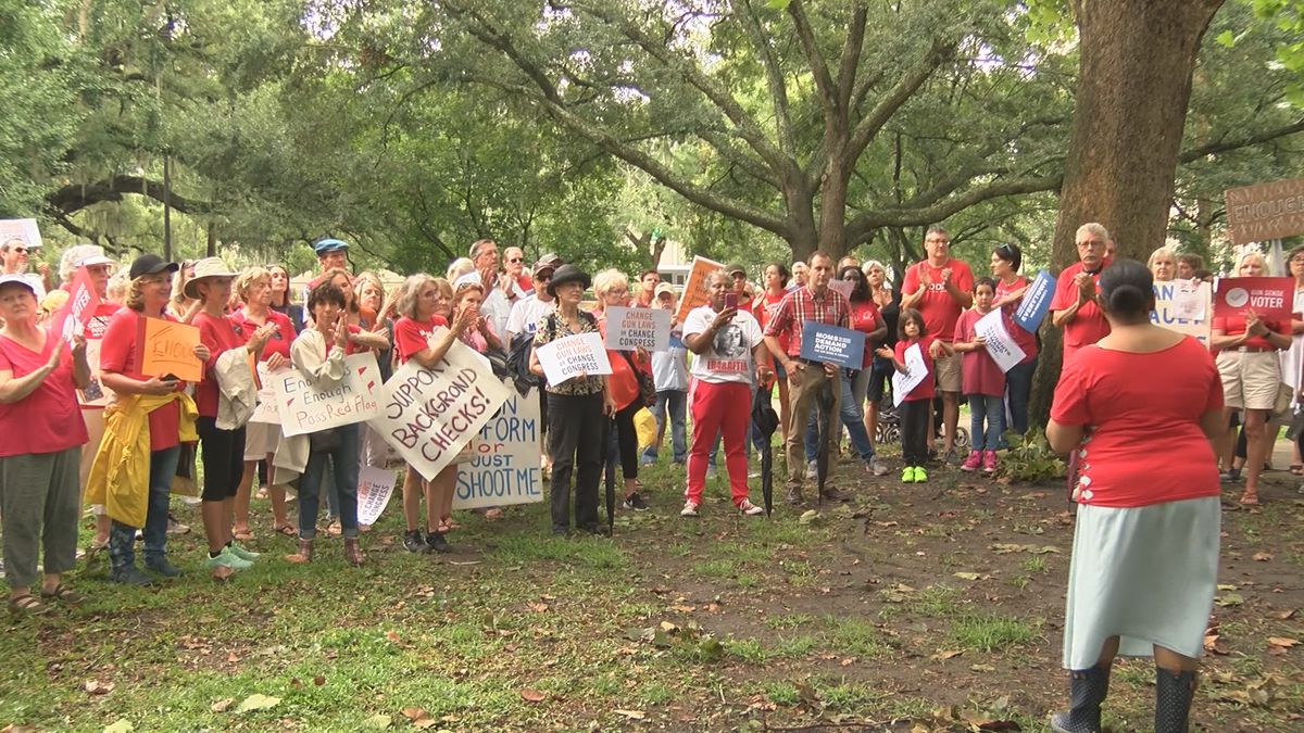 Protesters gather in Forsyth Park to advocate for more stringent gun laws