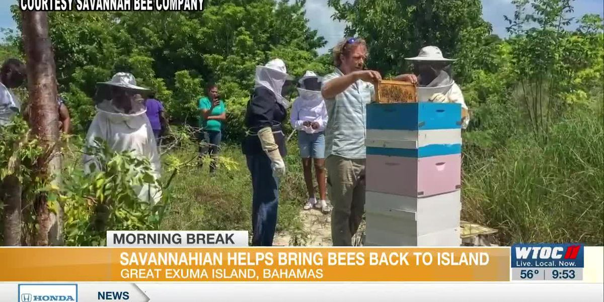 Savannahian Dedicated to Educating Others About Bees
