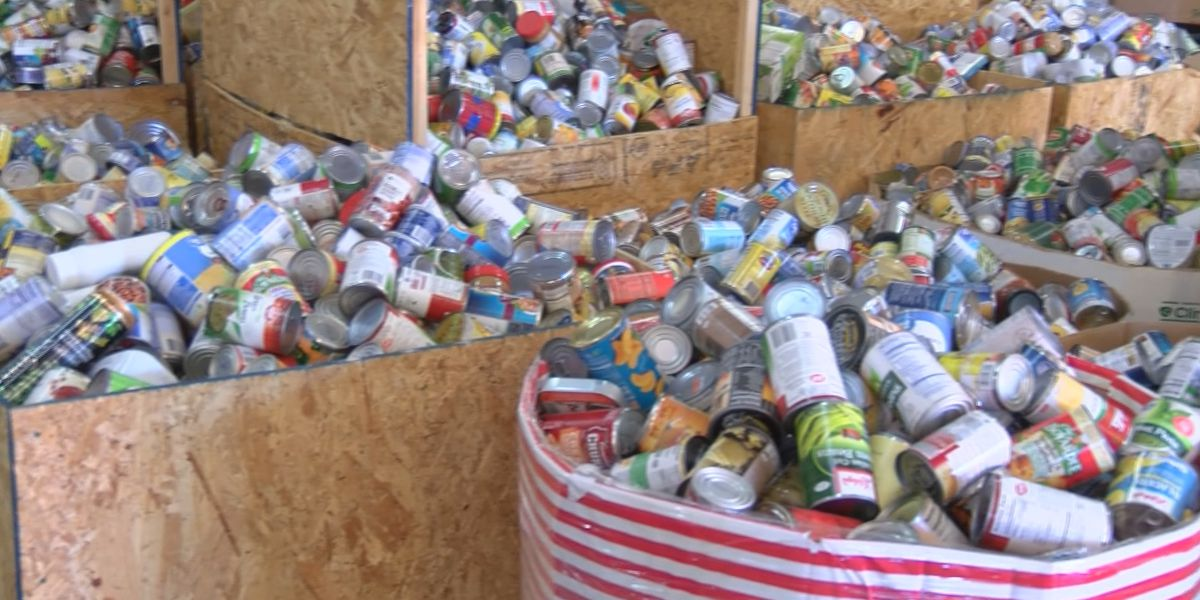 TMT Farms helps collect 25 tons of food donations with Christmas lights display