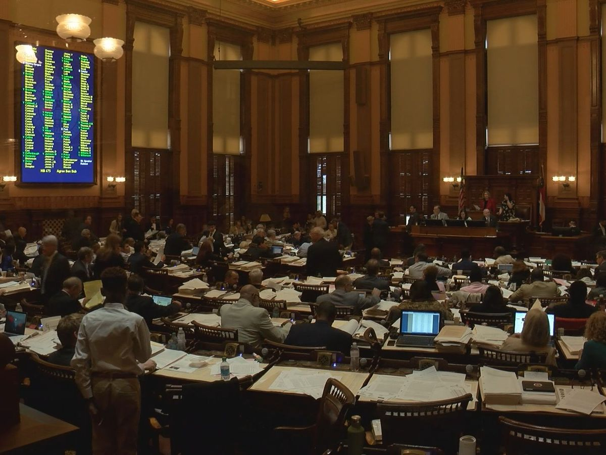 Georgia lawmakers introduce bill to help combat domestic, sexual violence