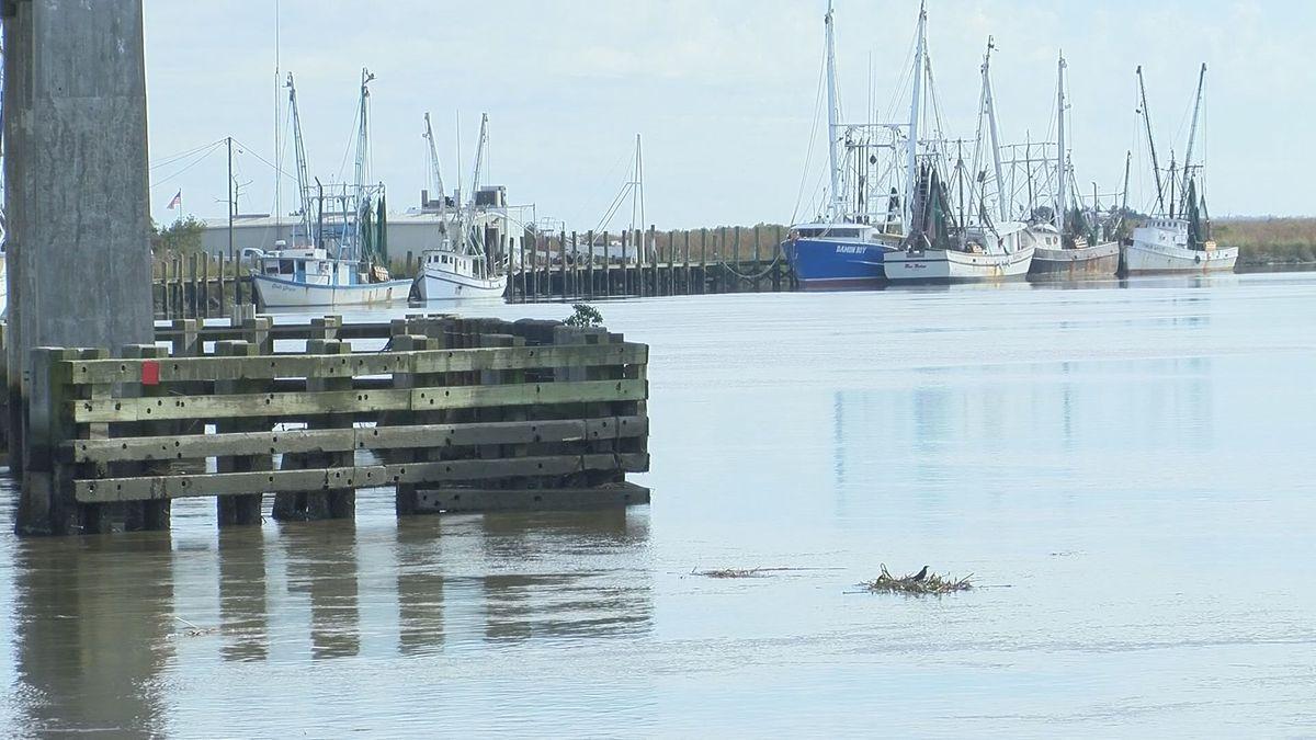 Developer proposes new pier, dock along Darien waterfront