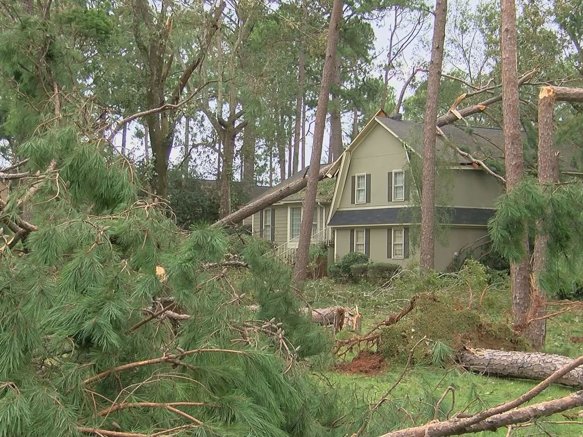 New division created to streamline disaster recovery process in Ga.