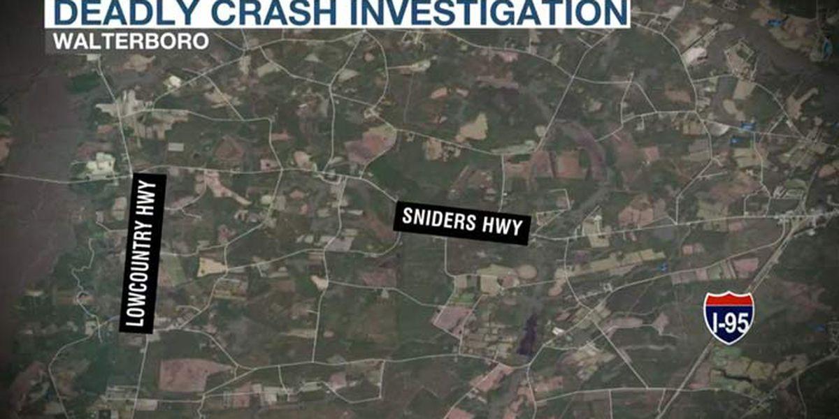 Driver killed after truck strikes tree near Walterboro