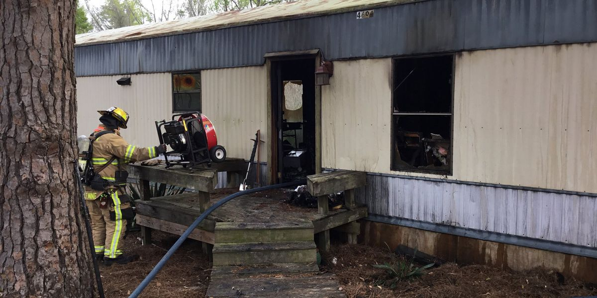 Young couple in shock after 9 pets killed in Beaufort County house fire