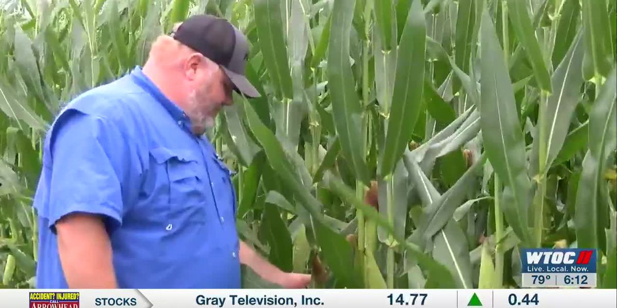 Proud to Be a Farmer: Shawn Page