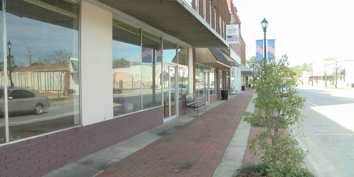 Locals propose plans to revitalize downtown Glennville