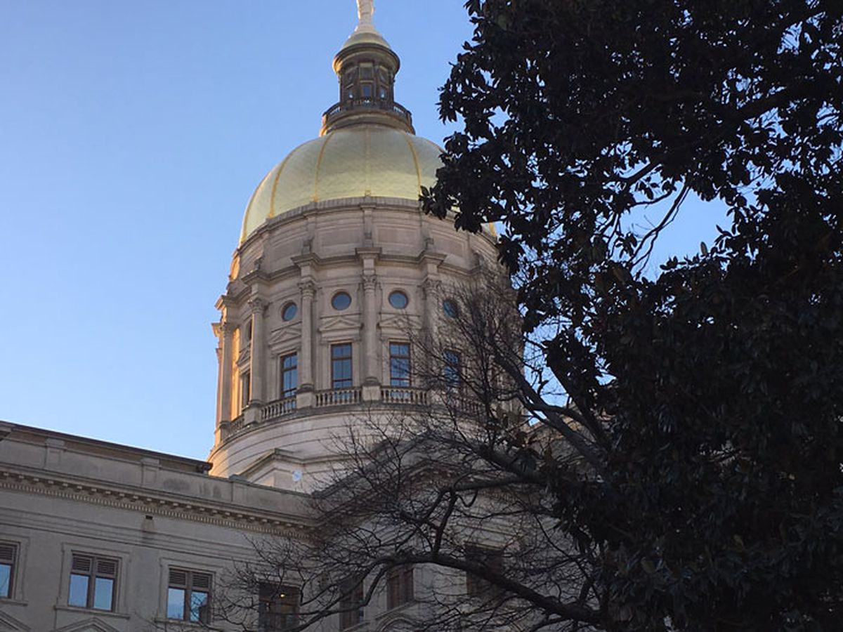 Ga. lawmakers will not vote on bill proposing incorporation of Chatham Co. islands