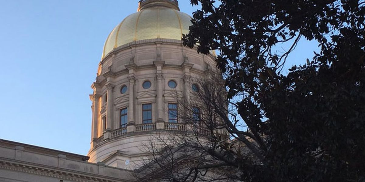 GA State Senate passes 'Heartbeat Bill,' now goes back to House