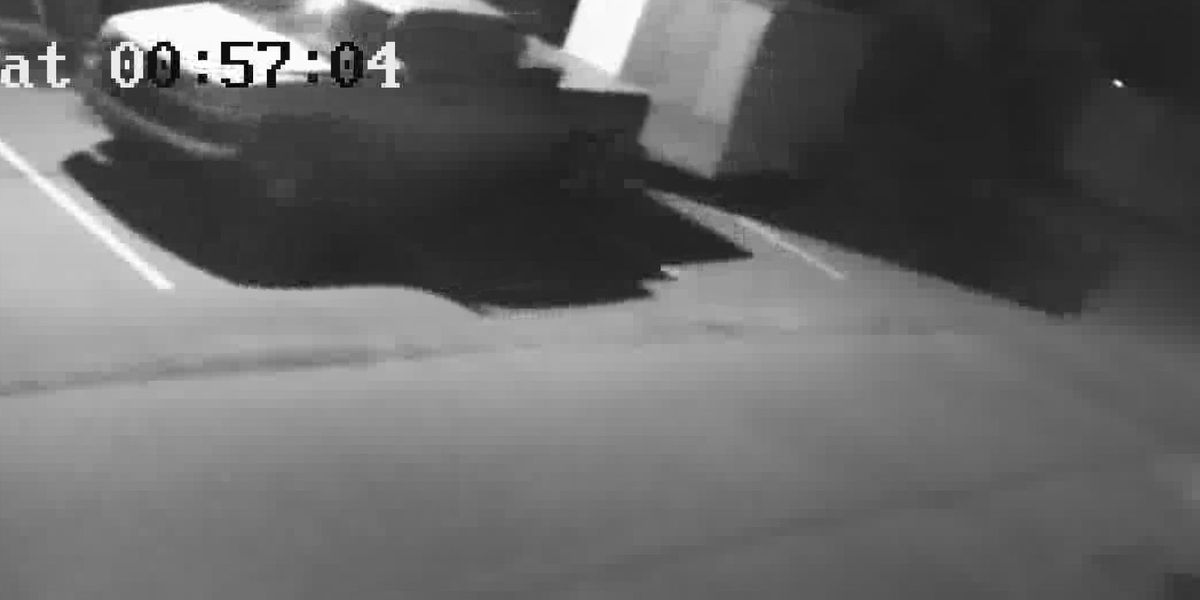 Suspect caught on camera stealing trailer from Pooler furniture store