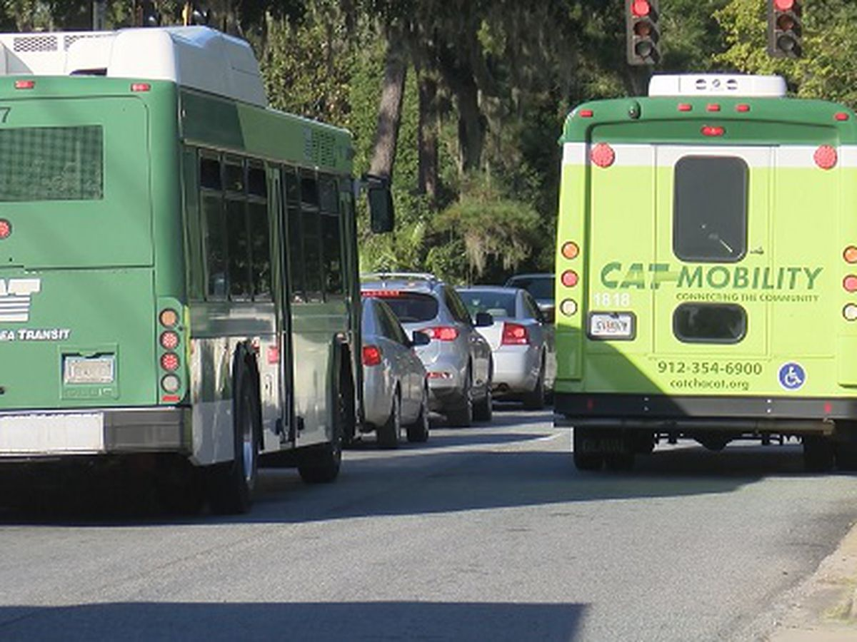 Chatham Area Transit stops service in Thunderbolt