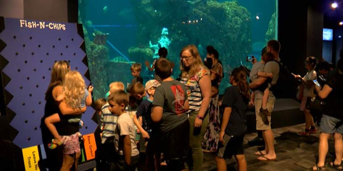 S.C. Aquarium to close through end of March