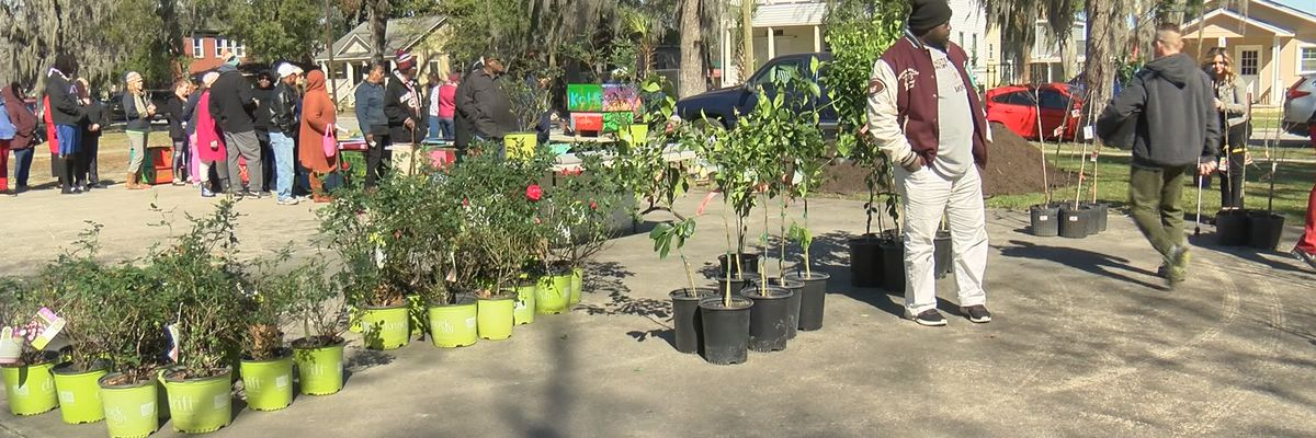 Arbor Day celebration continues in Savannah, Pooler communities