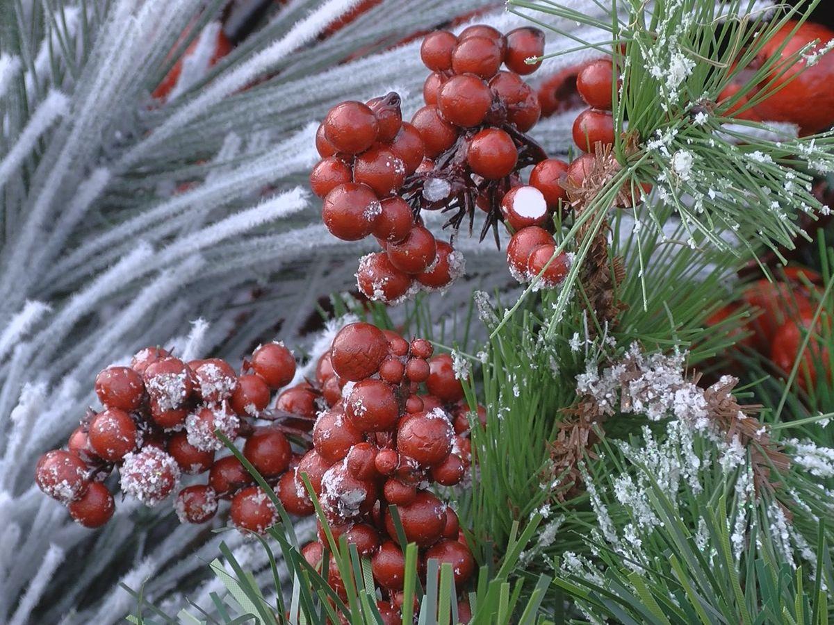 Ottawa Farms host old-fashoned Christmas