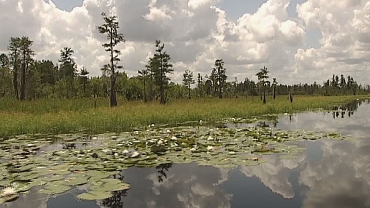 EPA weighs in on mining proposal for Okefenokee Swamp