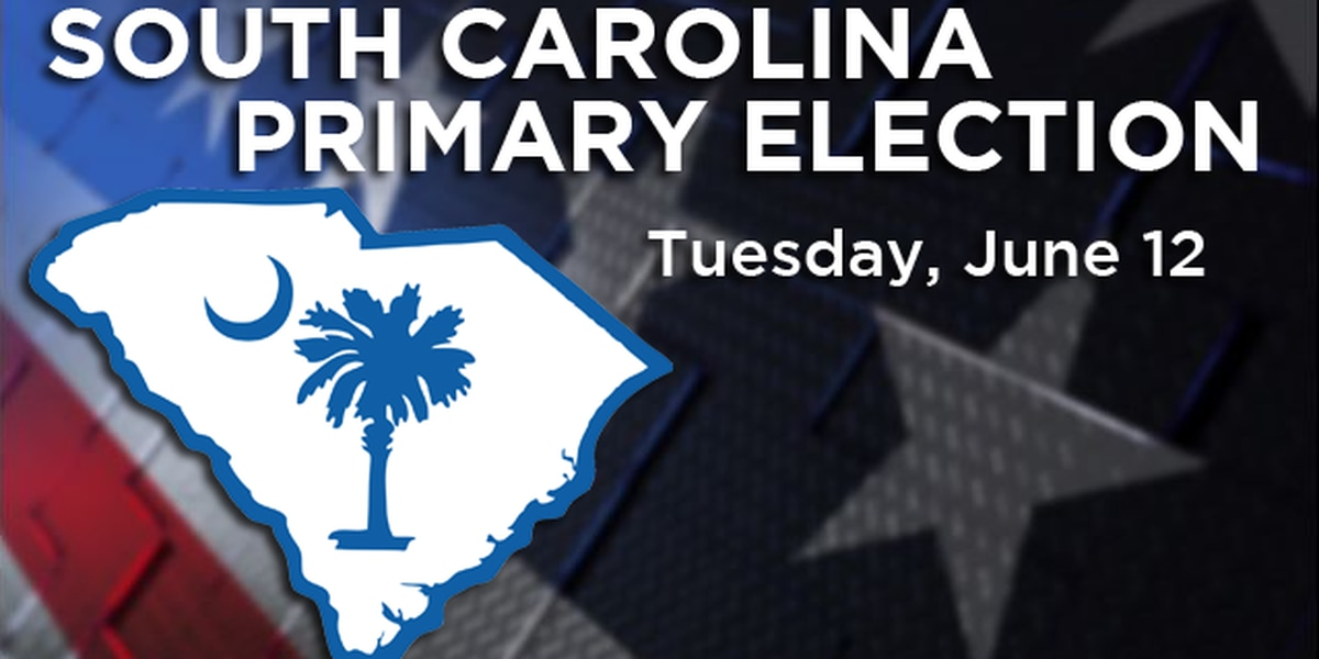 Candidates make final pitches before South Carolina primary