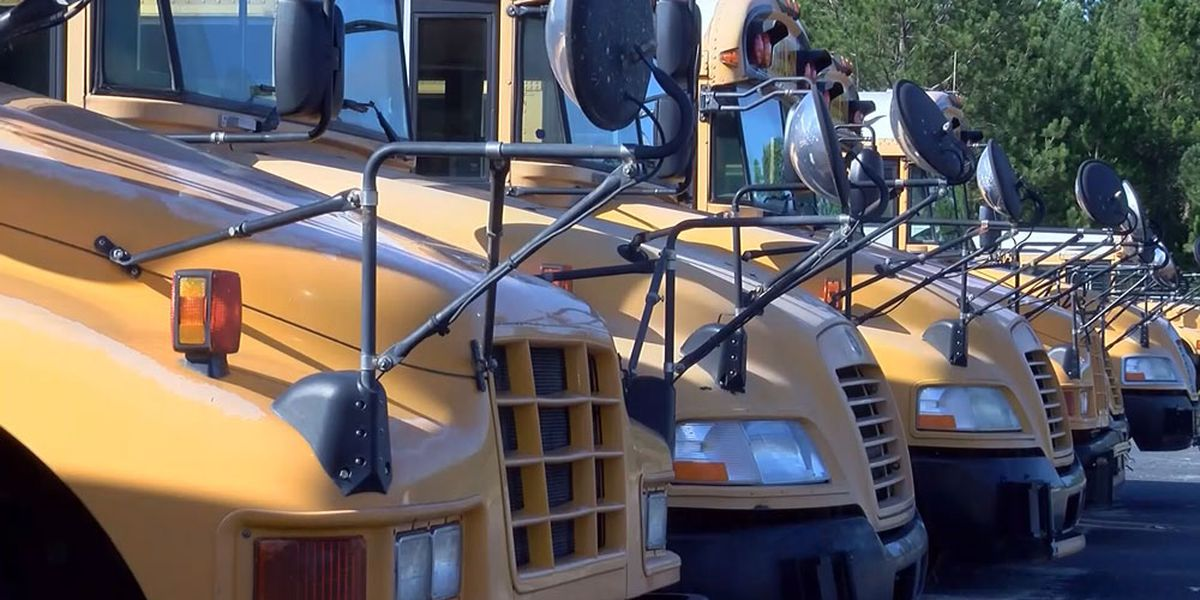Wayne, McIntosh County Schools start the new school year