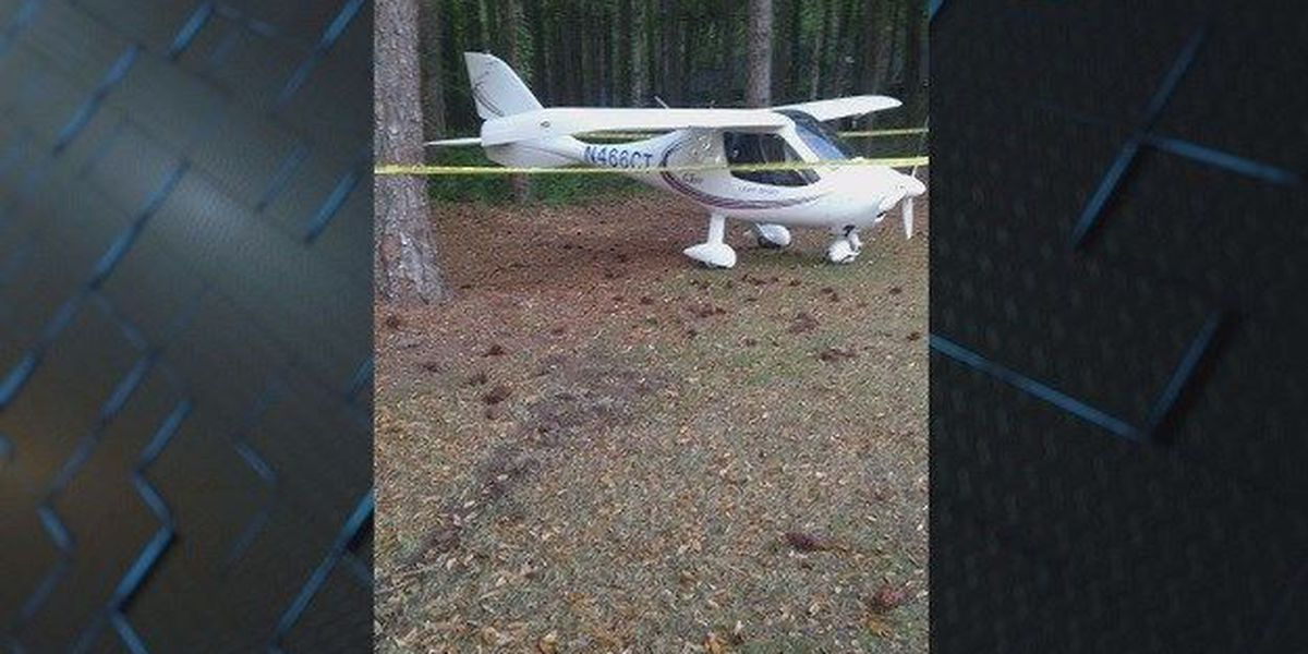 Small airplane makes emergency crash landing on Hilton Head golf course