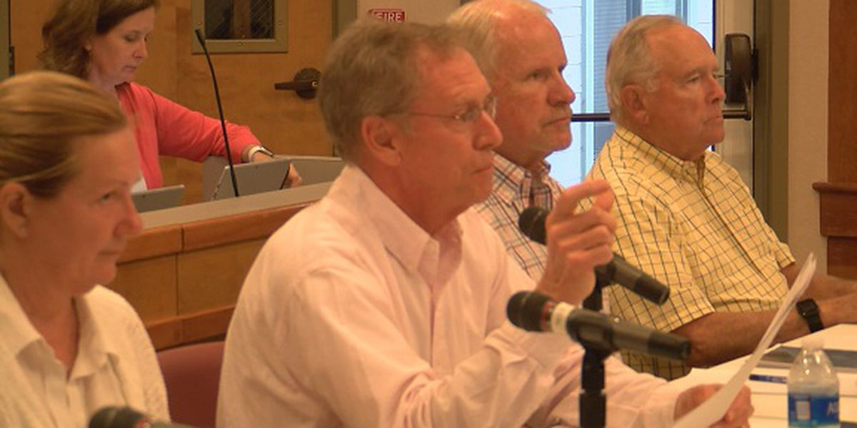Town leaders present plan for workforce housing on Hilton Head Island