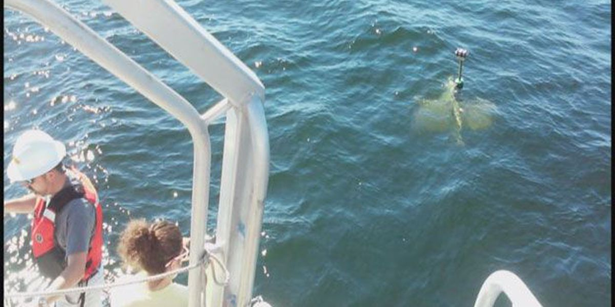 SSU students deploy current drifters