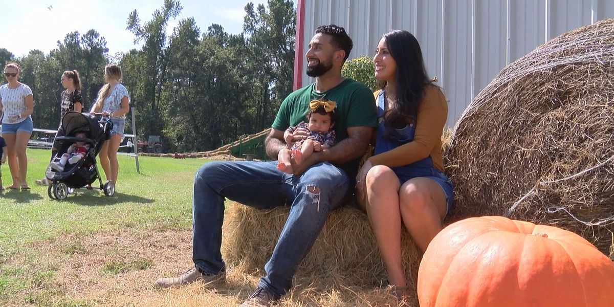Growing special pumpkins in Effingham County