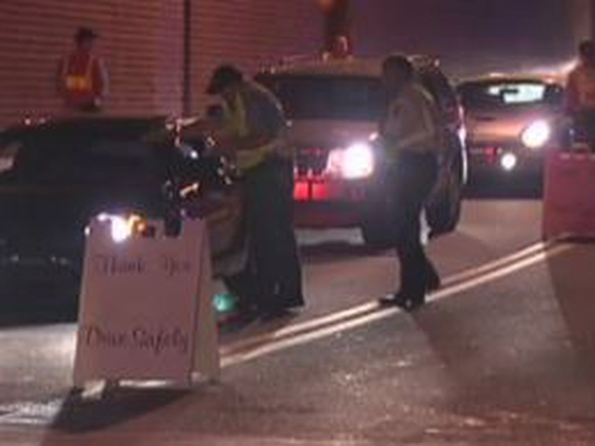 Ga. joins annual 'Drive Sober or Get Pulled Over' campaign for holiday season