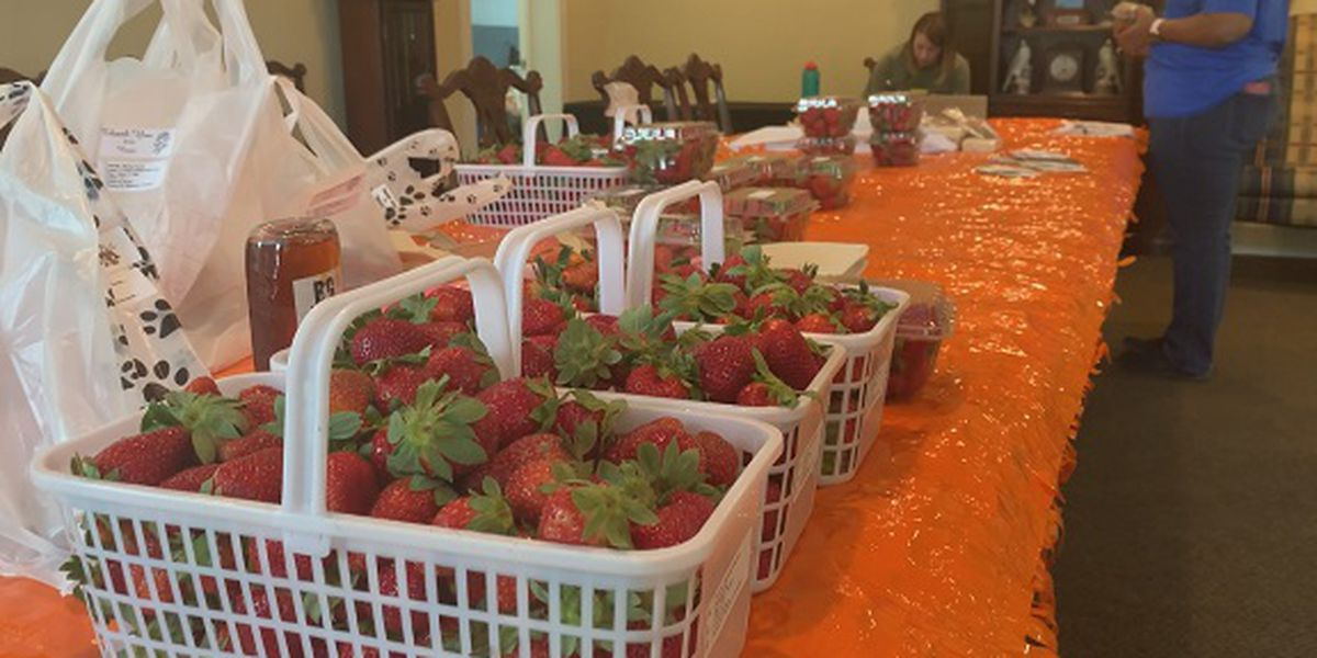 Proud to be a GA Farmer: Statesboro Farmers Market goes online