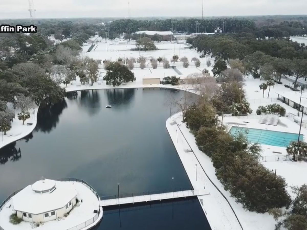 #TBT: Remembering last year's snow day in the Coastal Empire, Lowcountry