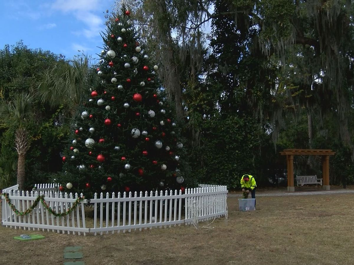 Bluffton Christmas tree lighting held at DuBois Park