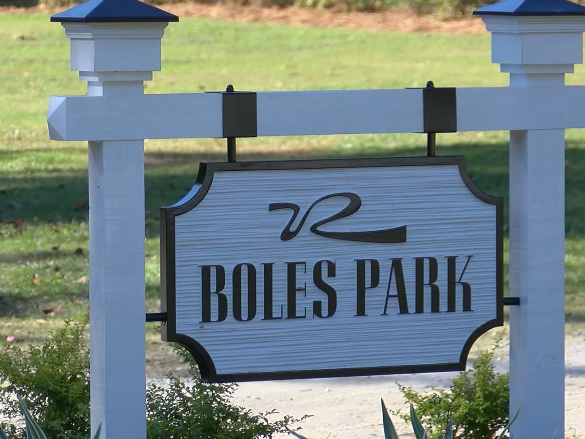 Richmond Hill City Council to discuss SPLOST funding for Boles Park