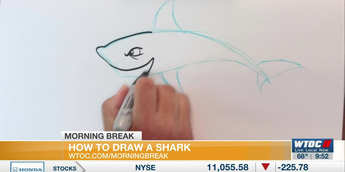 Learn to Draw: drawing a shark
