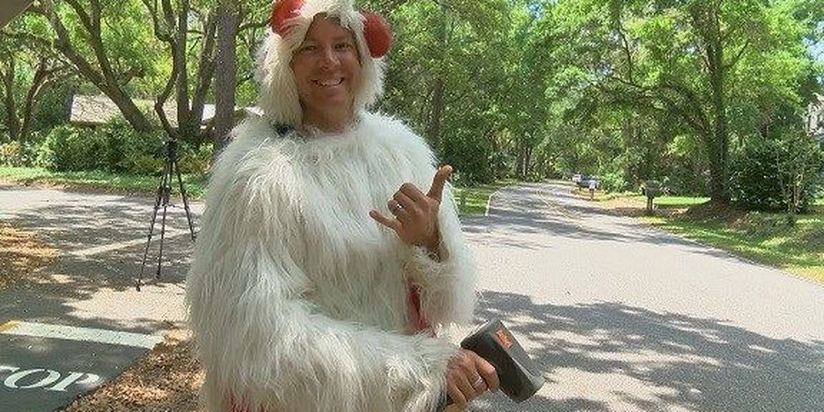 Lowcountry man famous for wearing chicken suit cited for wrestling alligator