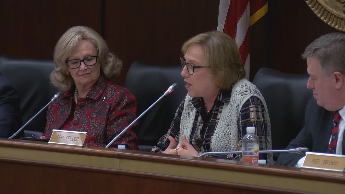 South Carolina lawmakers listen to proposed changes to education bill