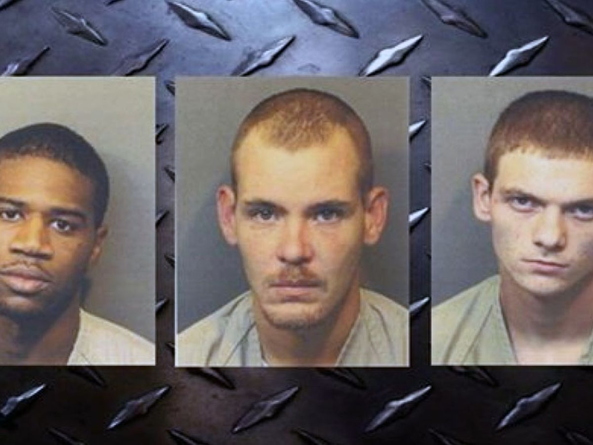 3 men charged with contributing to delinquency of minors in Hampton Co.