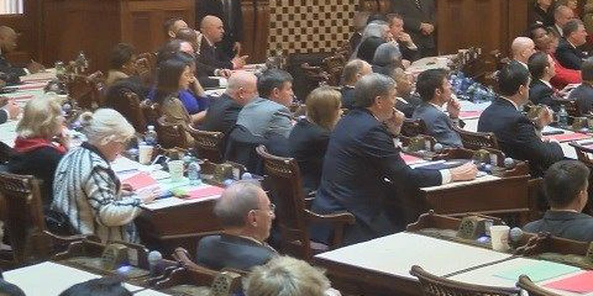 GA State House budget leaves out consolidation study money