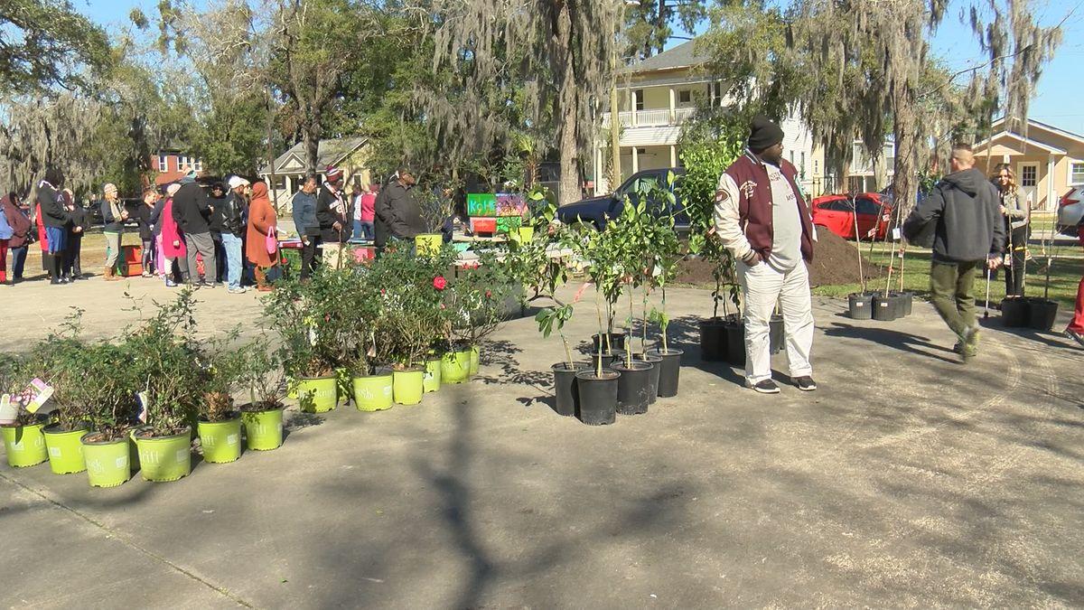 Arbor Day celebration continues in Savannah, Pooler communities
