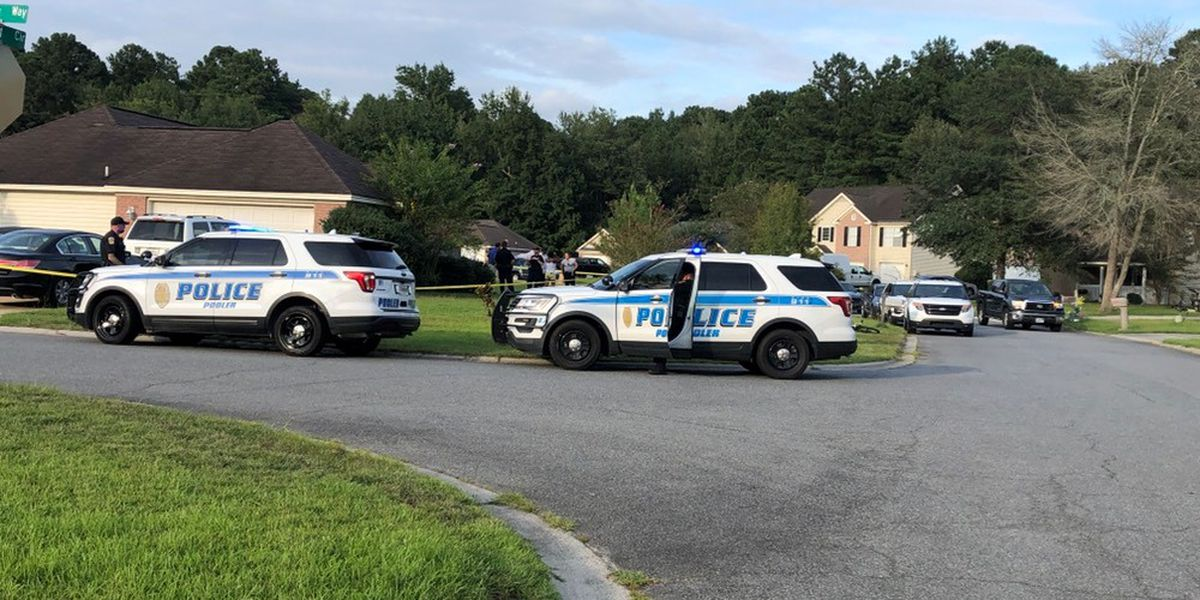 Pooler Police: Stepfather, son killed in domestic shooting